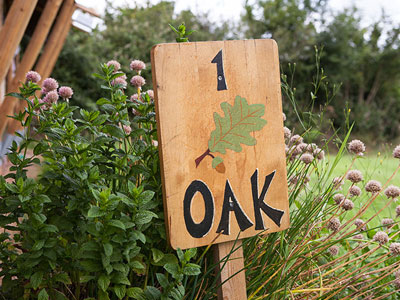 Glamping Oak Safari Tent Devon