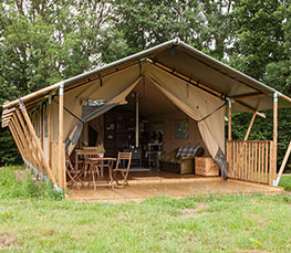 Beech Safari Tent